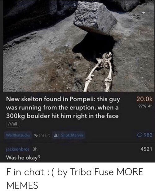 pompeii: New skelton found in Pompeii: this guy  was running from the eruption, whena  300kg boulder hit him right in the face  /r/all  20.0k  97% 4h  O982  Welthatsucks ansa.it &Shot. Marvin  4521  jacksonbros 3h  Was he okay? F in chat :( by TribalFuse MORE MEMES