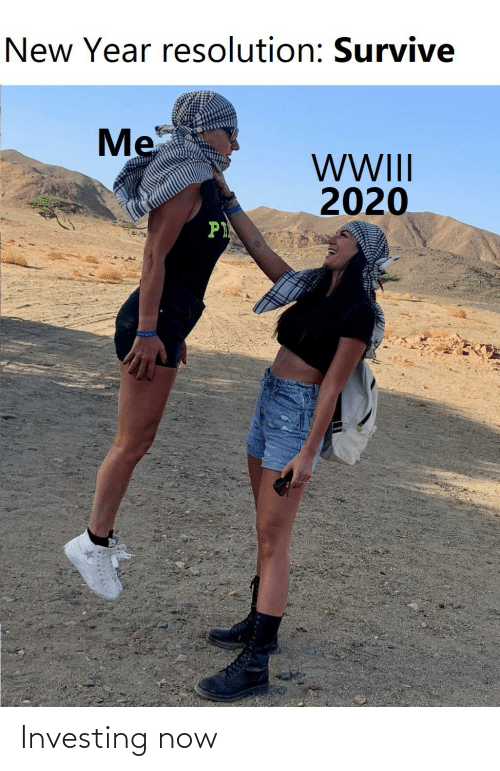 New Year Resolution: New Year resolution: Survive  Me  WWI  2020  P Investing now