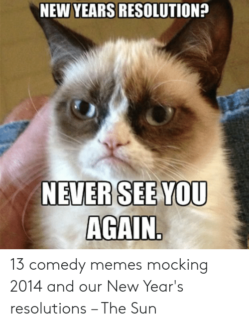 New Years Resolution Meme: NEW YEARS RESOLUTION?  NEVERSEEYOU  AGAIN. 13 comedy memes mocking 2014 and our New Year's resolutions – The Sun