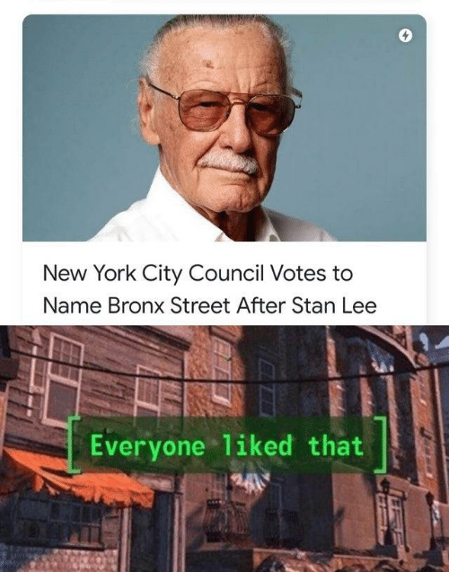 Bronx: New York City Council Votes to  Name Bronx Street After Stan Lee  Everyone liked that