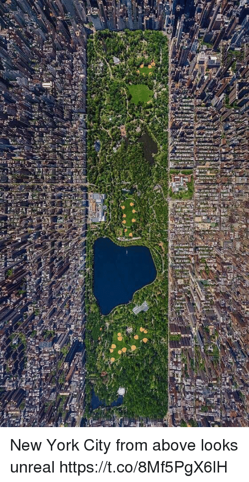 New York, Girl Memes, and New York City: New York City from above looks unreal https://t.co/8Mf5PgX6lH