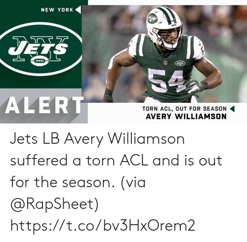 Memes, New York, and Jets: NEW YORK  HHH  54  ALERT  TORN ACL, OUT FOR SEASON  AVERY WILLIAMSON Jets LB Avery Williamson suffered a torn ACL and is out for the season. (via @RapSheet) https://t.co/bv3HxOrem2