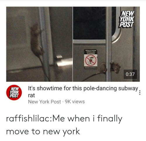Move To: NEW  YORK  POST  0:37  NEW  YORK  POST  It's showtime for this pole-dancing subway,  rat  New York Post 9K views raffishlilac:Me when i finally move to new york