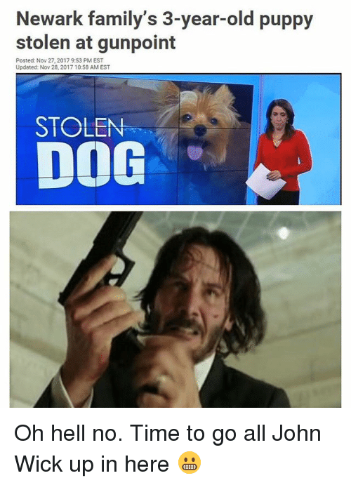John Wick, Memes, and Puppy: Newark family's 3-year-old puppy  stolen at gunpoint  Posted: Nov 27, 2017 9:53 PM EST  Updated: Nov 28, 2017 10:58 AM EST  DOG  STOLEN Oh hell no. Time to go all John Wick up in here 😬