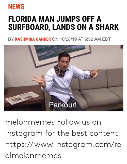 Parkour: NEWS  FLORIDA MAN JUMPS OFF A  SURFBOARD, LANDS ON A SHARK  BY KASHMIRA GANDER ON 10/28/19 AT 5:52 AM EDT  Parkour! melonmemes:Follow us on Instagram for the best content! https://www.instagram.com/realmelonmemes