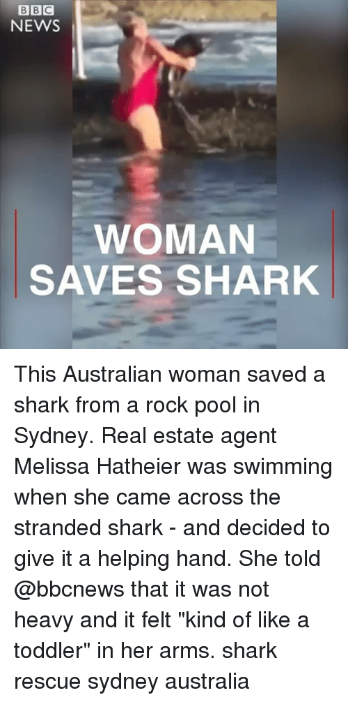 """real estate agent: NEWS  WOMAN  SAVES SHARK This Australian woman saved a shark from a rock pool in Sydney. Real estate agent Melissa Hatheier was swimming when she came across the stranded shark - and decided to give it a helping hand. She told @bbcnews that it was not heavy and it felt """"kind of like a toddler"""" in her arms. shark rescue sydney australia"""