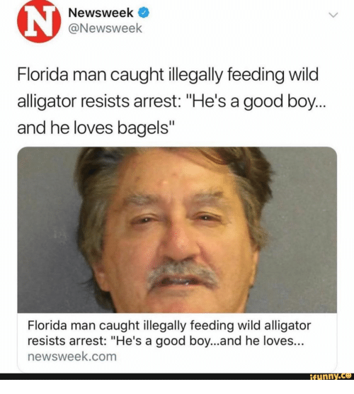 "He Loves: Newsweek  @Newsweek  Florida man caught illegally feeding wild  alligator resists arrest: ""He's a good boy...  and he loves bagels""  Florida man caught illegally feeding wild alligator  resists arrest: ""He's a good boy...and he loves...  newsweek.com  ifunny.co"