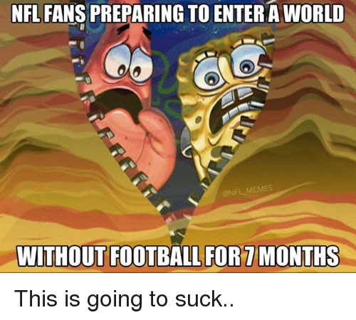 Nfl Fan and  Nfl Fans: NFL FANS PREPARING TO ENTER A WORLD  @NFL MEMES  WITHOUT FOOTBALL FOR MONTHS This is going to suck..