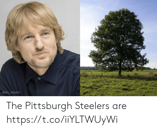 Pittsburgh: @NFL MEMES The Pittsburgh Steelers are https://t.co/iiYLTWUyWi