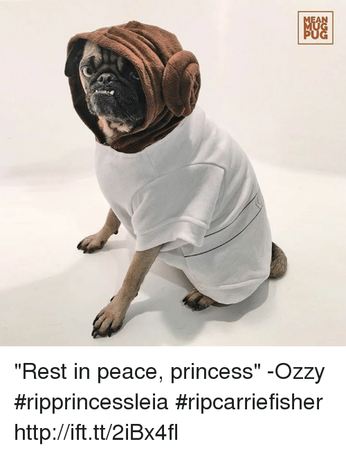 "Ozzies: NGG ""Rest in peace, princess"" -Ozzy #ripprincessleia #ripcarriefisher http://ift.tt/2iBx4fl"