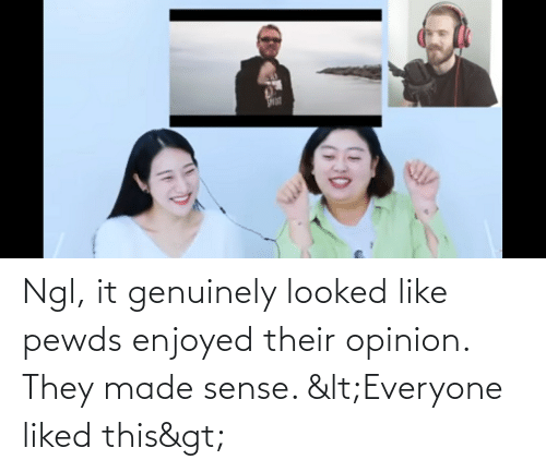 genuinely: Ngl, it genuinely looked like pewds enjoyed their opinion. They made sense. <Everyone liked this>