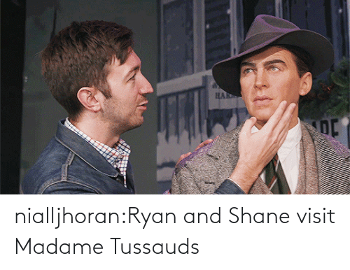 Shane: nialljhoran:Ryan and Shane visit Madame Tussauds