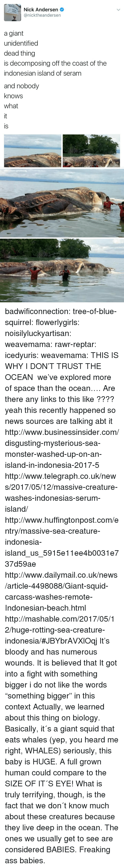 "heard me: NIC  Nick Andersen  @nicktheandersen  a giant  unidentified  dead thing  is decomposing off the coast of the  indonesian island of seram  and nobody  knows  what  is badwificonnection:  tree-of-blue-squirrel:   flowerlygirls:  noisilyluckyartisan:   weavemama:   rawr-reptar:  icedyuris:   weavemama: THIS IS WHY I DON'T TRUST THE OCEAN  we've explored more of space than the ocean….   Are there any links to this like ????  yeah this recently happened so news sources are talking abt it http://www.businessinsider.com/disgusting-mysterious-sea-monster-washed-up-on-an-island-in-indonesia-2017-5 http://www.telegraph.co.uk/news/2017/05/12/massive-creature-washes-indonesias-serum-island/ http://www.huffingtonpost.com/entry/massive-sea-creature-indonesia-island_us_5915e11ee4b0031e737d59ae http://www.dailymail.co.uk/news/article-4498088/Giant-squid-carcass-washes-remote-Indonesian-beach.html http://mashable.com/2017/05/12/huge-rotting-sea-creature-indonesia/#JBYbrAVXlOqj   It's bloody and has numerous wounds. It is believed that It got into a fight with something bigger   i do not like the words ""something bigger"" in this context  Actually, we learned about this thing on biology. Basically, it´s a giant squid that eats whales (yep, you heard me right, WHALES) seriously, this baby is HUGE. A full grown human could compare to the SIZE OF IT´S EYE! What is truly terrifying, though, is the fact that we don´t know much about these creatures because they live deep in the ocean. The ones we usually get to see are considered BABIES. Freaking ass babies."