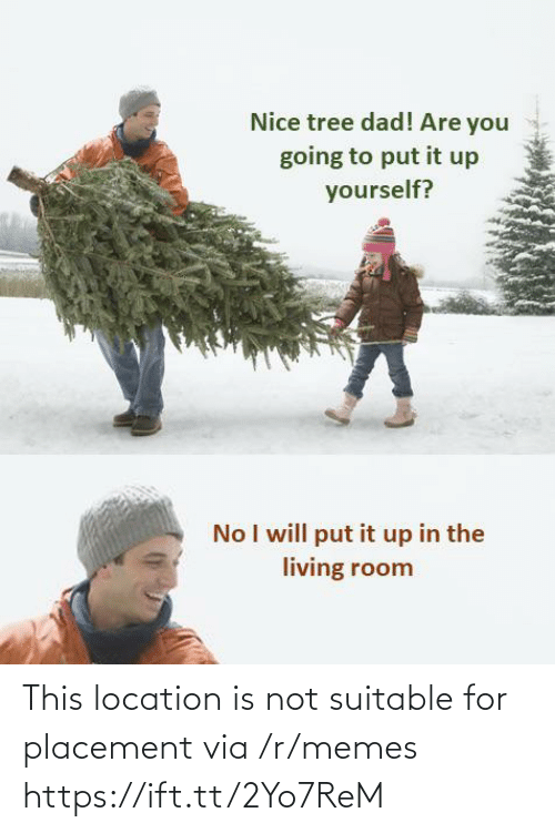 Dad, Memes, and Tree: Nice tree dad! Are you  going to put it up  yourself?  No I will put it up in the  living room This location is not suitable for placement via /r/memes https://ift.tt/2Yo7ReM
