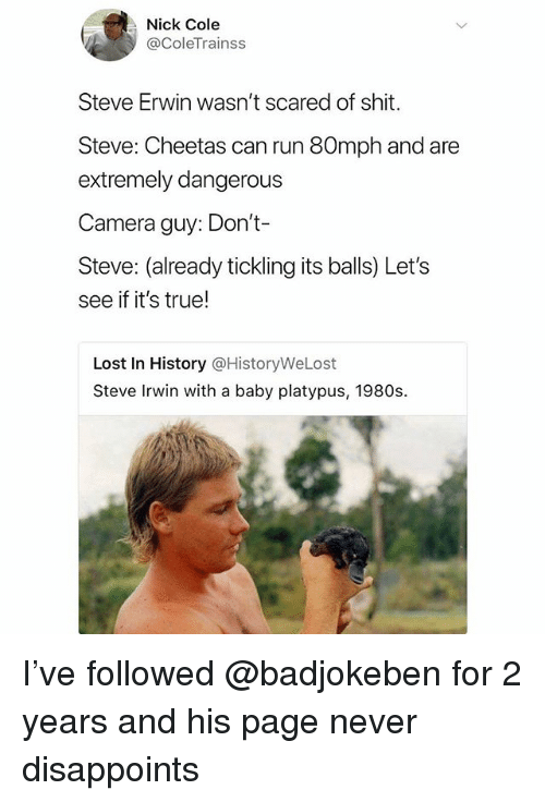 Run, Steve Irwin, and True: Nick Cole  @ColeTrainss  Steve Erwin wasn't scared of shit.  Steve: Cheetas can run 80mph and are  extremely dangerous  Camera guy: Don't-  Steve: (already tickling its balls) Let's  see if it's true!  Lost In History @HistoryWeLost  Steve Irwin with a baby platypus, 1980s. I've followed @badjokeben for 2 years and his page never disappoints