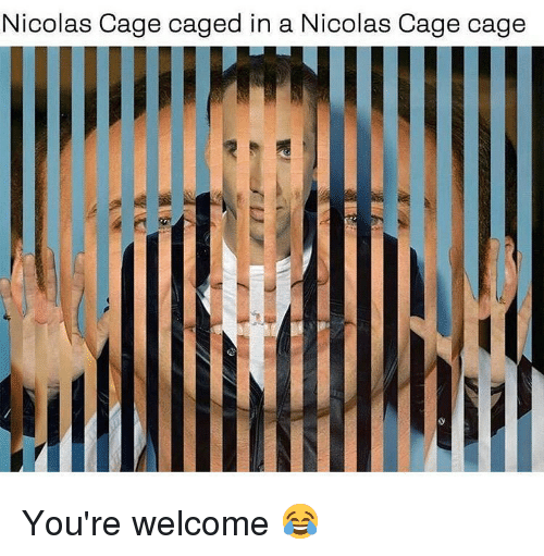 Caged: Nicolas Cage caged in a N  icolas Cage cage You're welcome 😂