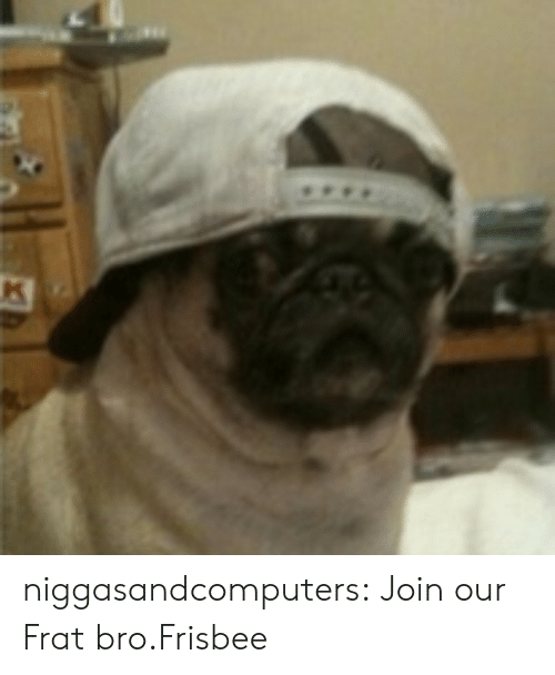 frat: niggasandcomputers:  Join our Frat bro.Frisbee