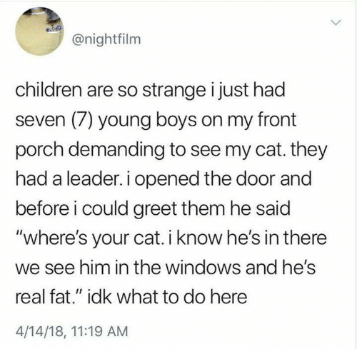 """demanding: @nightfilm  children are so strange i just had  seven (7) young boys on my front  porch demanding to see my cat. they  had a leader. i opened the door and  before i could greet them he said  """"where's your cat. i know he's in there  we see him in the windows and hes  real fat."""" idk what to do here  4/14/18, 11:19 AM"""