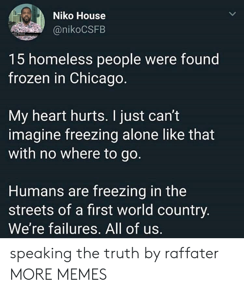 first world: Niko House  @nikoCSFB  15 homeless people were found  frozen in Chicago  My heart hurts. I just can't  imagine freezing alone like that  with no where to go.  Humans are freezing in the  streets of a first world country  We're failures. All of us. speaking the truth by raffater MORE MEMES