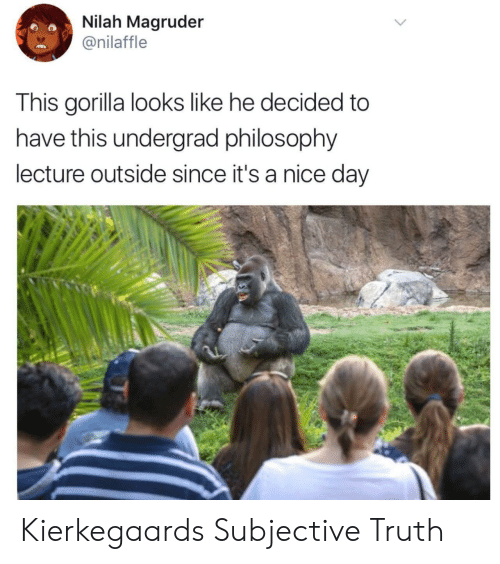 subjective: Nilah Magruder  @nilaffle  This gorilla looks like he decided to  have this undergrad philosophy  lecture outside since it's a nice day Kierkegaards Subjective Truth