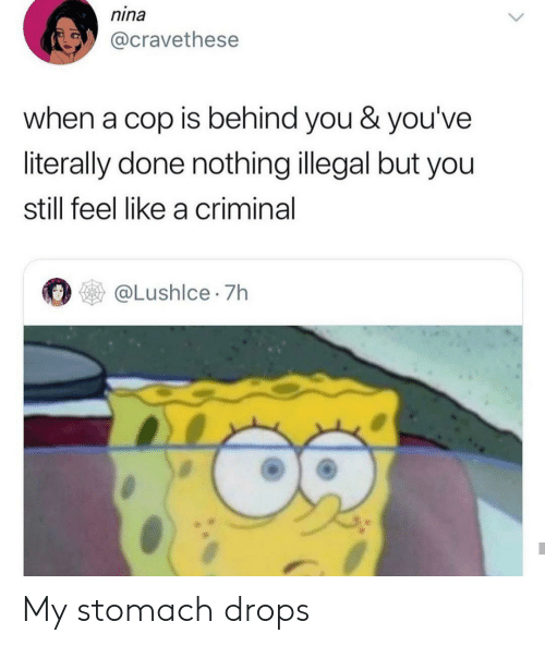 behind you: nina  @cravethese  when a cop is behind you & you've  literally done nothing illegal but you  still feel like a criminal  @Lushlce 7h My stomach drops