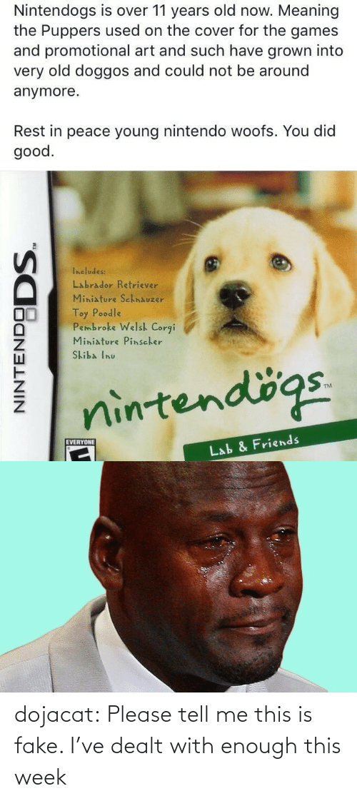 toy: Nintendogs is over 11 years old now. Meaning  the Puppers used on the cover for the games  and promotional art and such have grown into  very old doggos and could not be around  anymore.  Rest in peace young nintendo woofs. You did  good.  Includes:  Labrador Retriever  Miniature SchnAuzer  Toy Poodle  Pembroke Welsh Corgi  Miniature Pinscher  Skiba Inu  nintendögs.  EVERYONE  Lab & Friends  NINTENDO  DODS. dojacat:  Please tell me this is fake. I've dealt with enough this week