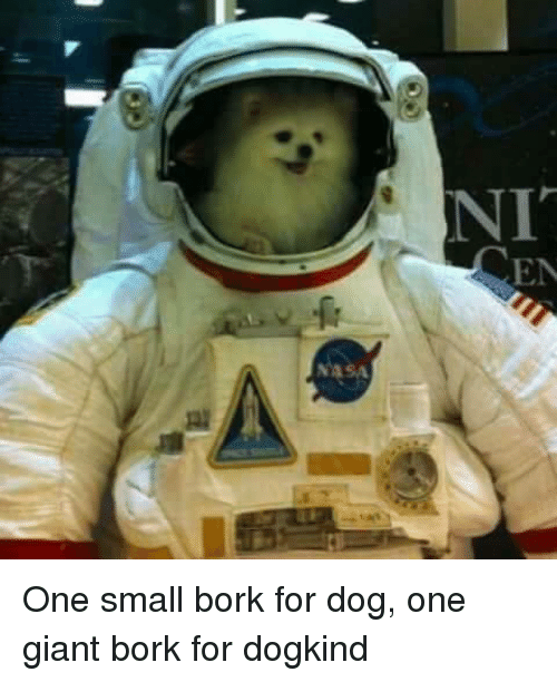 Giant, Dog, and One: NIT  EN One small bork for dog, one giant bork for dogkind