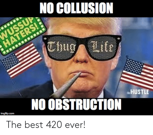 Best 420: NO COLLUSION  WUSSUPD  HATERSoLl  NO OBSTRUCTION  HUSTLE  imgflip.com The best 420 ever!