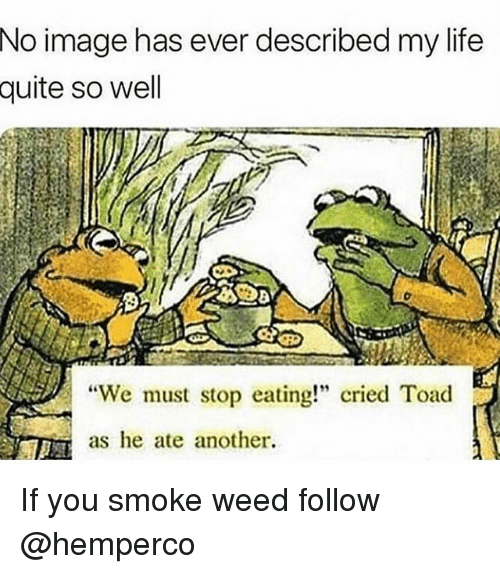"We Must Stop Eating Cried Toad As He Ate Another: No image has ever described my life  quite  so well  ""We must stop eating!"" cried Toad  as he ate another. If you smoke weed follow @hemperco"