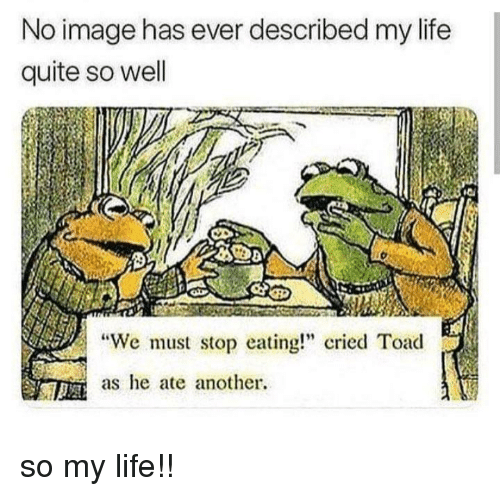 "We Must Stop Eating Cried Toad As He Ate Another: No image has ever described my life  quite so well  ""We must stop eating cried Toad  as he ate another. so my life!!"