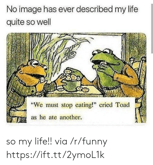 "We Must Stop Eating Cried Toad As He Ate Another: No image has ever described my life  quite so well  ""We must stop eating cried Toad  as he ate another. so my life!! via /r/funny https://ift.tt/2ymoL1k"