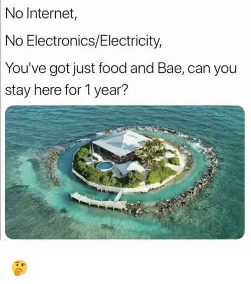 no internet: No  Internet  No Electronics/Electricity,  You've  got just food and Bae, can you  stay here for 1 year? 🤔