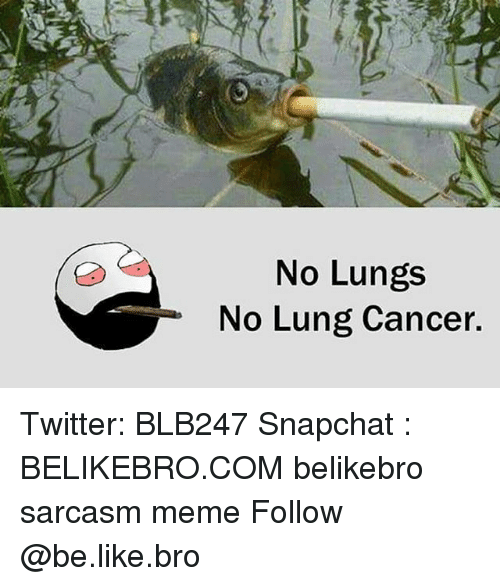 Be Like, Meme, and Memes: No Lungs  No Lung Cancer. Twitter: BLB247 Snapchat : BELIKEBRO.COM belikebro sarcasm meme Follow @be.like.bro