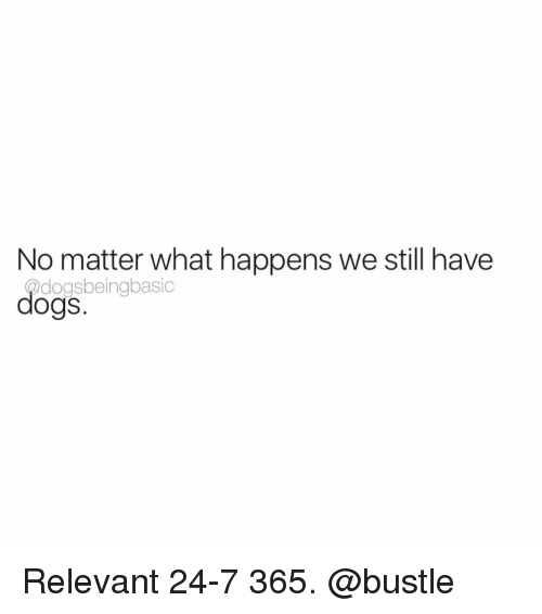 relevent: No matter what happens we still have  dogsbeingbasic  dogs Relevant 24-7 365. @bustle