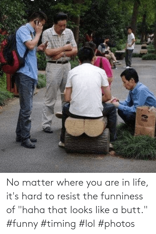"""In Life: No matter where you are in life, it's hard to resist the funniness of """"haha that looks like a butt."""" #funny #timing #lol #photos"""