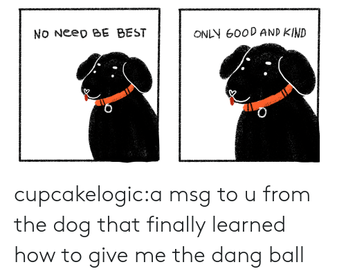 msg: No Neeo BE BEST  ONLN 600D AND KIND cupcakelogic:a msg to u from the dog that finally learned how to give me the dang ball