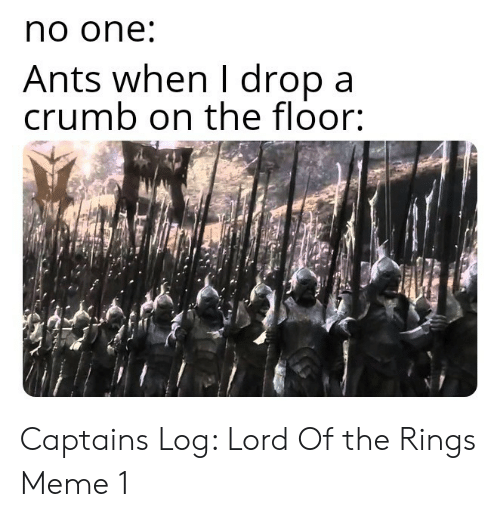 lord of the: no one  Ants when I dropa  crumb on the floor: Captains Log: Lord Of the Rings Meme 1