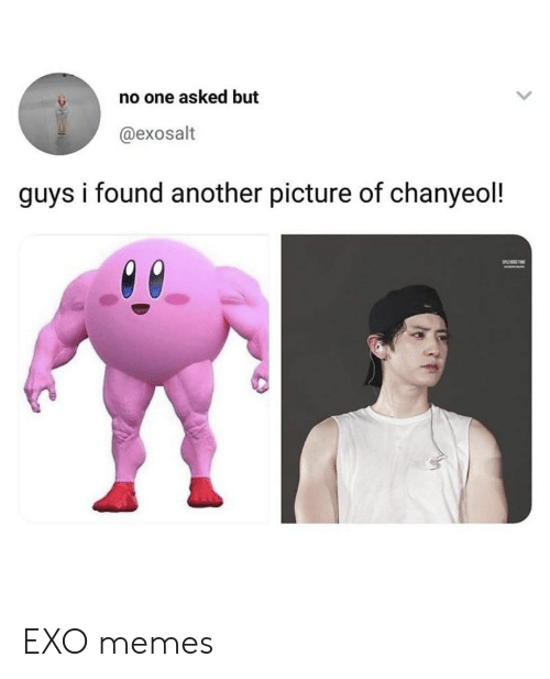 Chanyeol: no one asked but  @exosalt  guys i found another picture of chanyeol! EXO memes