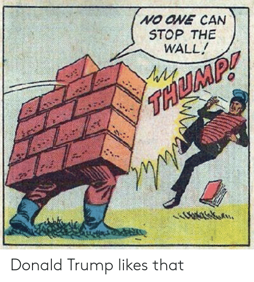Donald Trump, Reddit, and Trump: NO ONE CAN  STOP THE  WALL  WM Donald Trump likes that