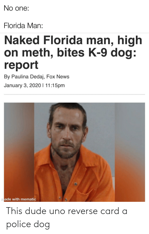 k-9: No one:  Florida Man:  Naked Florida man, high  on meth, bites K-9 dog:  report  By Paulina Dedaj, Fox News  January 3, 2020 I 11:15pm  Imade with mematic This dude uno reverse card a police dog