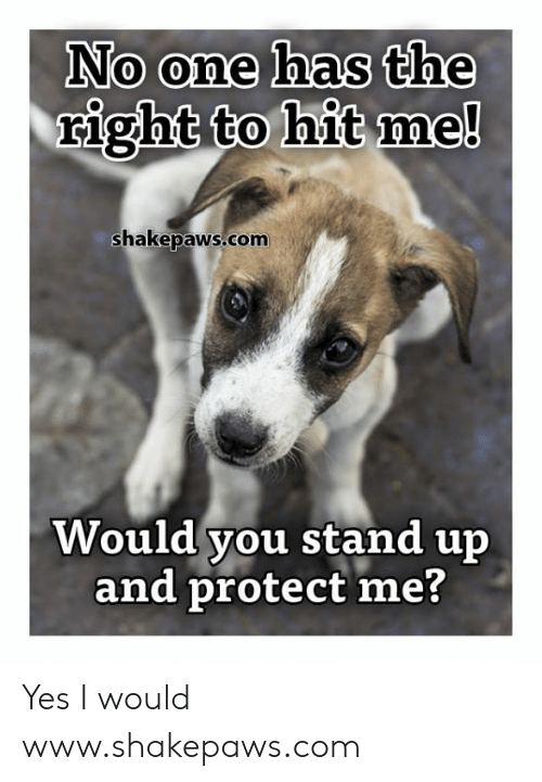 Memes, 🤖, and Yes: No one has the  right to hit me!  shakepaws.com  Would you stand up  and protect me? Yes I would www.shakepaws.com