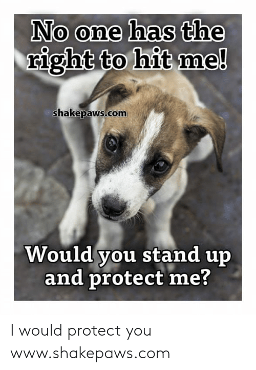 Memes, 🤖, and Com: No one has the  right to hit me!  shakepaws.com  Would you stand up  and protect me? I would protect you www.shakepaws.com