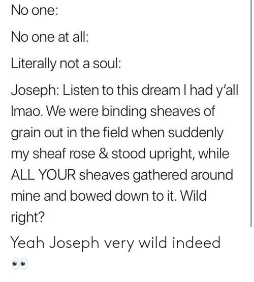 Sheaf: No one:  No one at all:  Literally not a soul:  Joseph: Listen to this dream I had y'al  Imao. We were binding sheaves of  grain out in the field when suddenly  my sheaf rose & stood upright, while  ALL YOUR sheaves gathered around  mine and bowed down to it. Wild  right? Yeah Joseph very wild indeed 👀