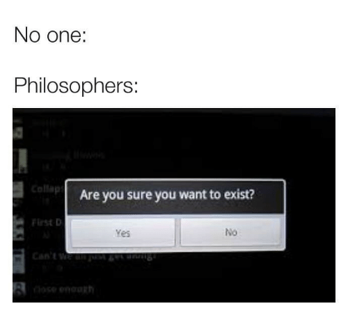 Yes, One, and You: No one:  Philosophers:  Collap  Are you sure you want to exist?  Flrst D  No  Yes  8  rh