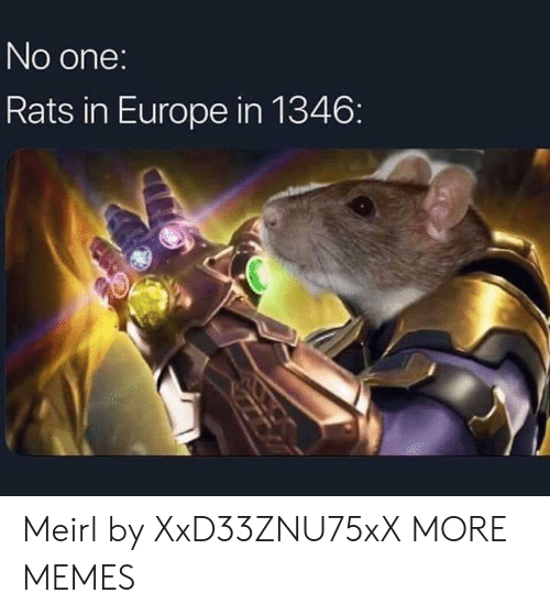 Dank, Memes, and Target: No one:  Rats in Europe in 1346: Meirl by XxD33ZNU75xX MORE MEMES