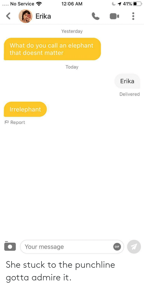 Doesnt Matter: No Service  1 41% O  12:06 AM  Erika  Yesterday  What do you call an elephant  that doesnt matter  Today  Erika  Delivered  Irrelephant  P Report  Your message  GIF She stuck to the punchline gotta admire it.