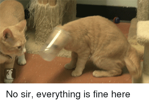 Mrw, Coworkers, and Boss: No sir, everything is fine here