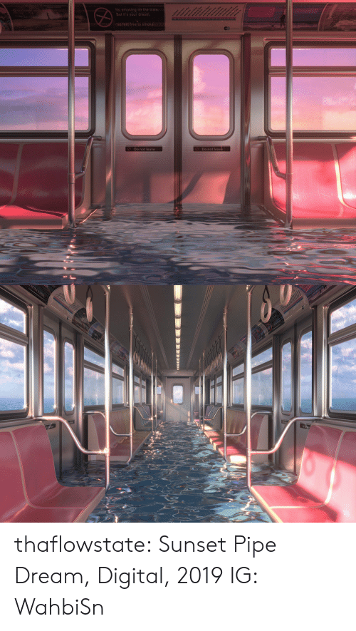 the train: No smoking on the train.  But it's your dream,  aean  So feel free to smoke.  Do not leave  Do not leave   t free to sm thaflowstate:   Sunset Pipe Dream, Digital, 2019    IG: WahbiSn