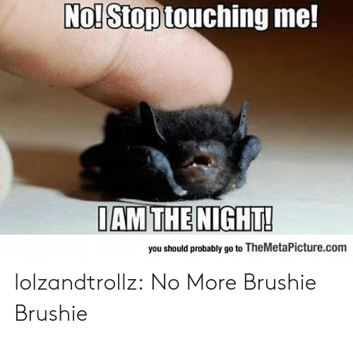 Tumblr, Blog, and Com: No! Stop touching me!  IAM THE NIGHT!  you should probably go to TheMetaPicture.com lolzandtrollz:  No More Brushie Brushie