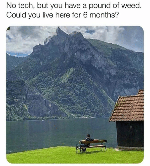 Memes, Weed, and Live: No tech, but you have a pound of weed.  Could you live here for 6 months?